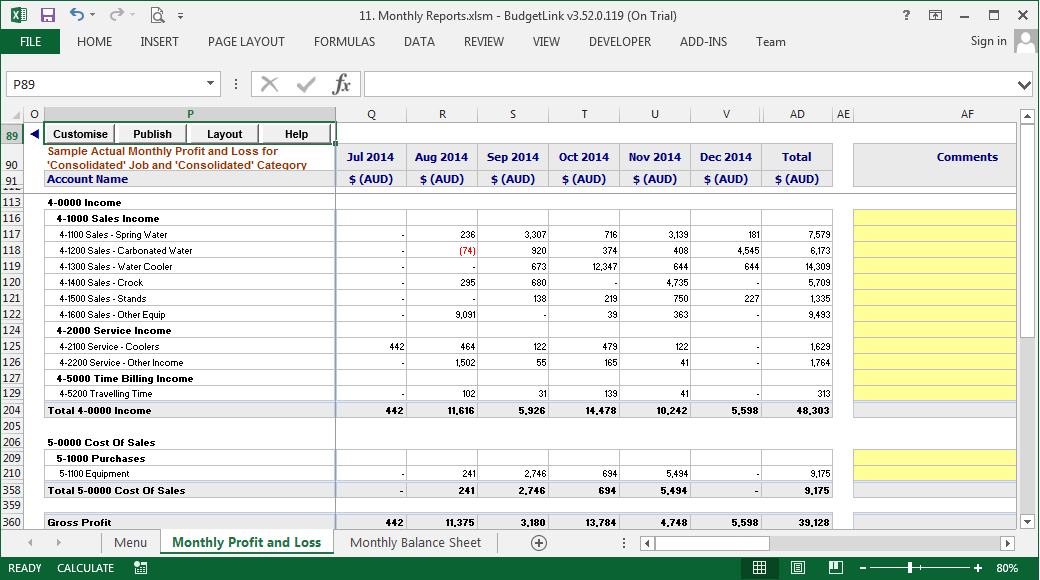 monthly budgeting and reporting